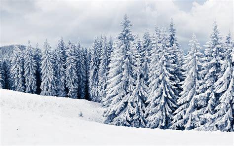 Winter Wallpaper Desktop by Winter Hd Desktop Wallpapers High Definition