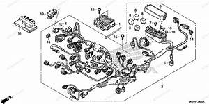 Honda Motorcycle 2014 Oem Parts Diagram For Wire Harness  1