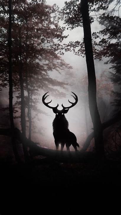 Phone Dark Forest Background Deer Wallpapers 1080