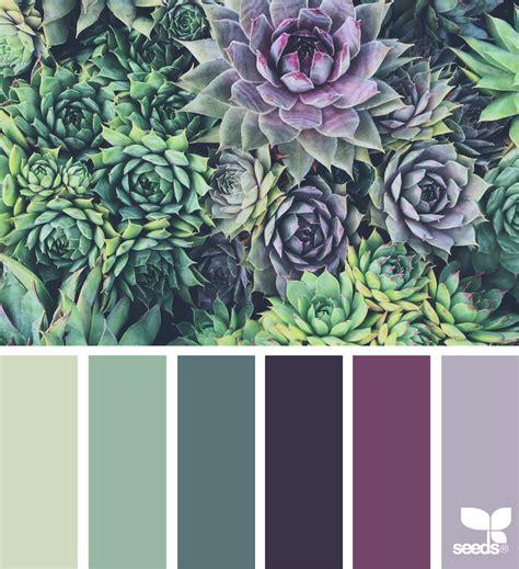 succulent hues paint colors color color