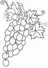 Coloring Grapes Grapevine Template Strawberry Fruits Vegetables Raskraska Vinograd Coloringtop sketch template