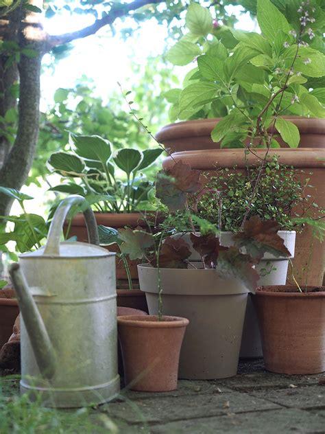 vasi terracotta rettangolari mix and match quando la plastica incontra la terracotta