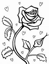 Coloring Roses Pages Hearts Printable sketch template
