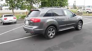 2007 Acura Mdx  Nimbus Gray Metallic - Stock  731087
