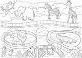 Zoo Coloring Animals Printable Poster A4 sketch template
