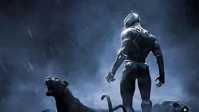 Panther 4k Wallpapers Pc Rise Dark Desktop