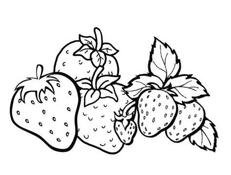 25 gambar buah buahan untuk mewarnai