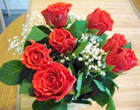 Gedicht 7 Rote Rosen Für Dich Meine Liebe Mutter Von