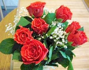Begleitpflanzen Für Rosen : gedicht 7 rote rosen f r dich meine liebe mutter von ~ Lizthompson.info Haus und Dekorationen