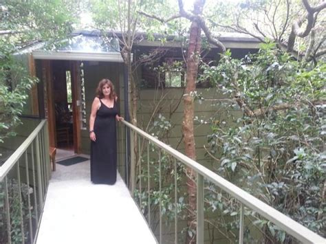 boutique canap room photo 459254 canopy treehouses boutique hotel