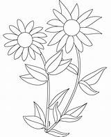 Sunflower Coloring Sunflowers Pages Clipart Printable Preschoolers Colouring Sheets Drawing Rocks Cliparts Number Tangled Template Preschool Adult Simple Plants Adults sketch template