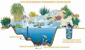 Bac à Poisson Extérieur : bac a poisson exterieur 5 comment faire une mare bassin dans son jardin qrmaison cgrio ~ Teatrodelosmanantiales.com Idées de Décoration