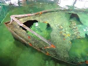 outdoor marine aquariums gumbo limbo nature center