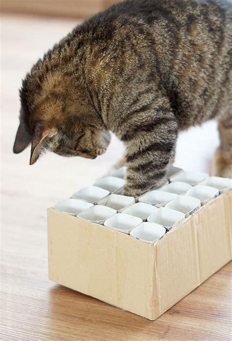 katzenspielzeug fummelkiste diy cat content katzen