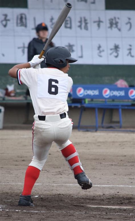 豊田 大谷 高校