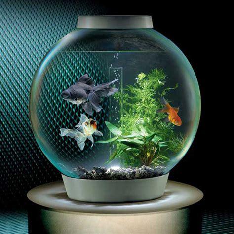 BiOrb Self Filtering Aquarium   The Green Head