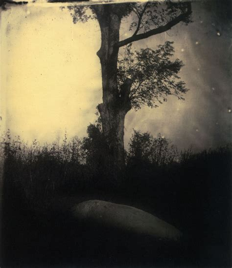Sally Mann's Landscapes