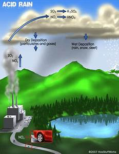 How Acid Rain Works