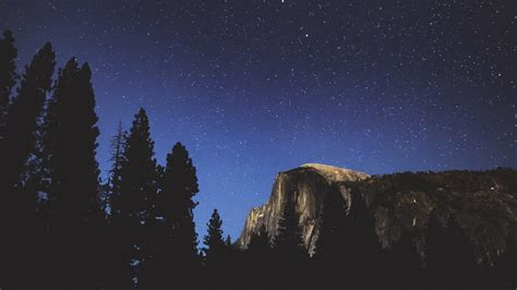 Download Wallpaper 1920x1080 Night Trees Mountains