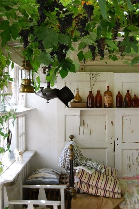 not shabby vine 1000 images about green ceiling inspiration on pinterest gardens green roofs and vines