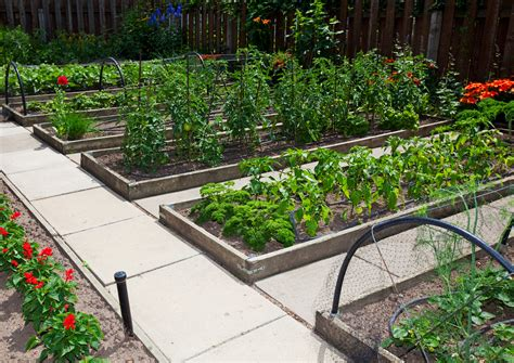 Proper Soil Mixes For A Raised Bed Vegetable Garden