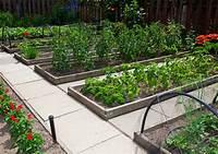 raised vegetable garden Proper Soil Mixes for a Raised Bed Vegetable Garden   H3RS ...