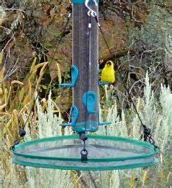 1000+ ideas about Hanging Bird Feeders on Pinterest ...