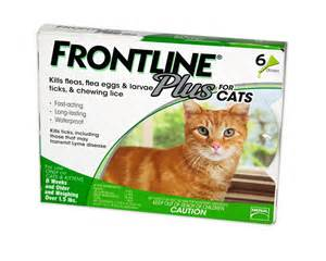 frontline for cats frontline plus for cats petco