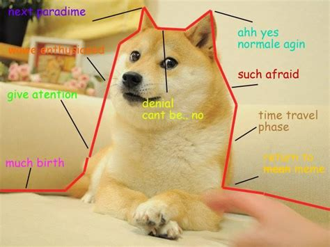 Dogecoin Meme - such graph doge know your meme