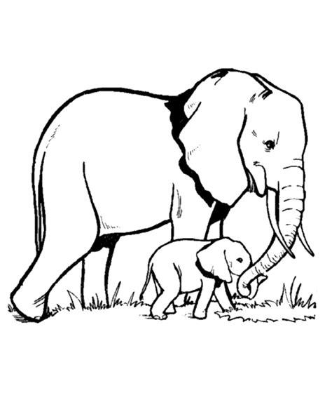 Coloring Gajah by Mewarnai Gambar Anak Gajah Coloringpages Asia