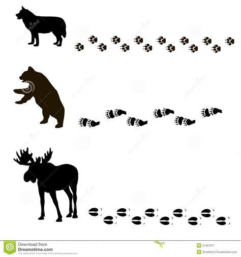 Tiere und ihre Spuren vektor abbildung. Illustration von ...