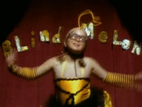 Blind Melon Bee Costume by This Is What The Bee From Blind Melon S No