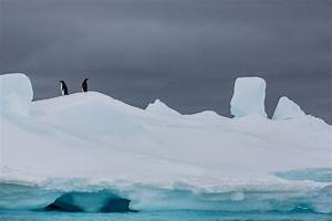 Record Mileage Antarctica S Sea Ice Shrinks To New Record Low