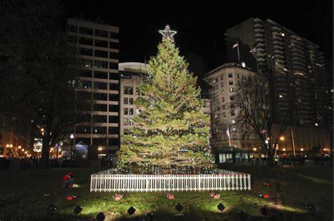 impolitical the nova scotia tree for boston 2011