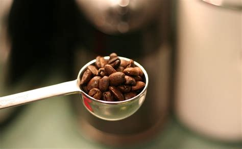 Before someone taints it with the creams and sugars(or other sweeteners like maple syrup or honey), a black cup of coffee merely has 2 calories for a 8 ounce cup. Do not Forget to Check Your Favorite Coffee Drink Calories, if you Addict Coffee? | IyiCoffee