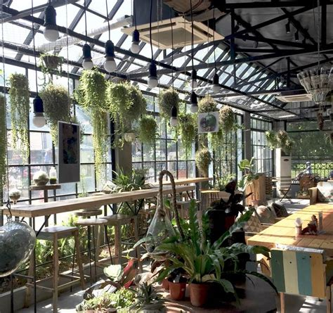 Последние твиты от coffee garden cafe (@coffeegarden208). Two coffee shop for nature lovers | Vietnam Travel Blog