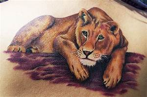The gallery for --> Lioness Tattoo For Women