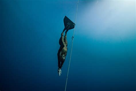 free diver molchanova descends for fun then vanishes the new york times