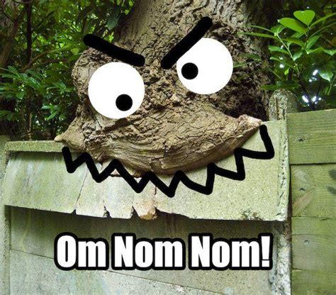 Nom Meme - image 26379 om nom nom nom know your meme