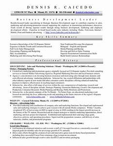 resume sample former business owner best custom paper With business owner resume template
