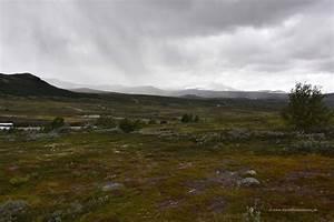 Mit Dem Wohnmobil Durch Norwegen : durchquerung des dovrefjell nationalparks die weltenbummler ~ Jslefanu.com Haus und Dekorationen