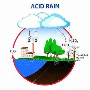Diagram  Acid Rain Cycle Diagram