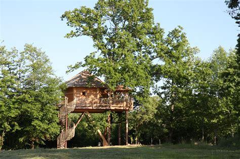 la cabane p 233 rigord perch 233 e dans les arbres