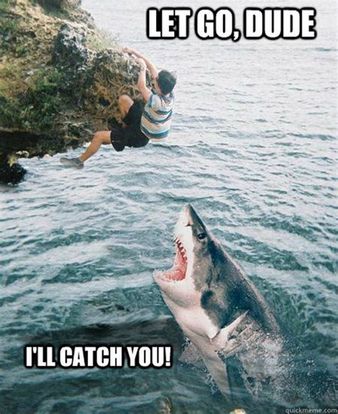 Funny Shark Meme - oh shit moments mega compilation 70 pics