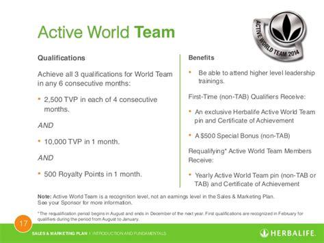 marketing qualifications marketing plan