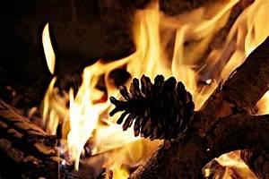 Comment Se Chauffer Pas Cher : le bois le combustible le moins cher pour se chauffer le comptoir web ~ Melissatoandfro.com Idées de Décoration