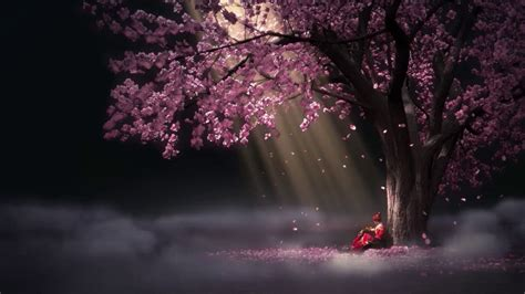 Animated Tree Wallpaper - blossom flowers drop animated wallpaper