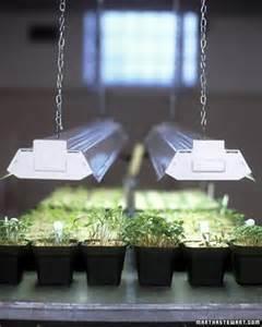 starting seeds lights seed starting 101 martha stewart home garden