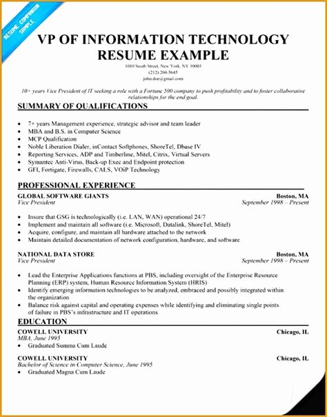 Information Technology Director Resume by 7 Information Technology Resume Templates Free Sles
