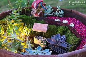 Succulent Garden: Fairy Garden Idea - Crafts Unleashed
